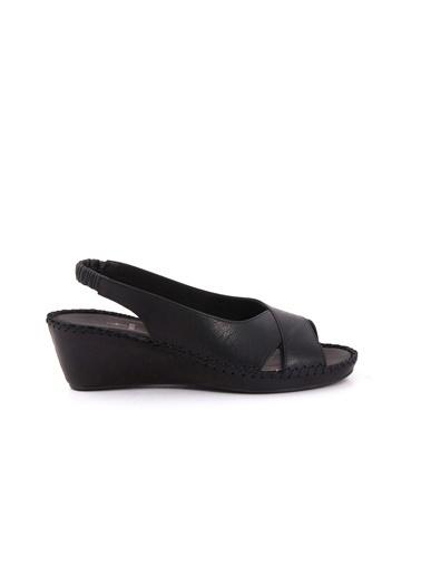 Ayakkabı-Tanca
